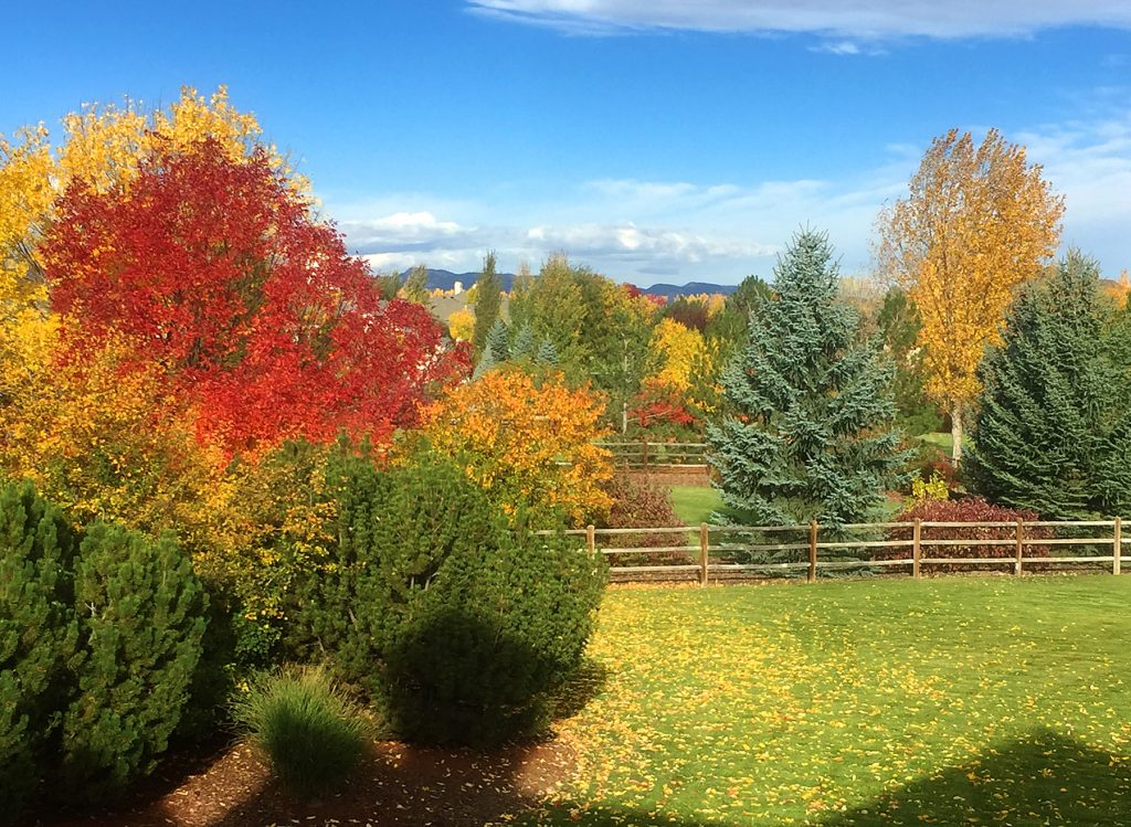 fall in Colorado