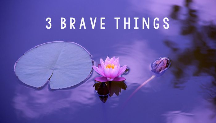 3 Brave Things: 3 Bite-Size Practical Goals for the New Year